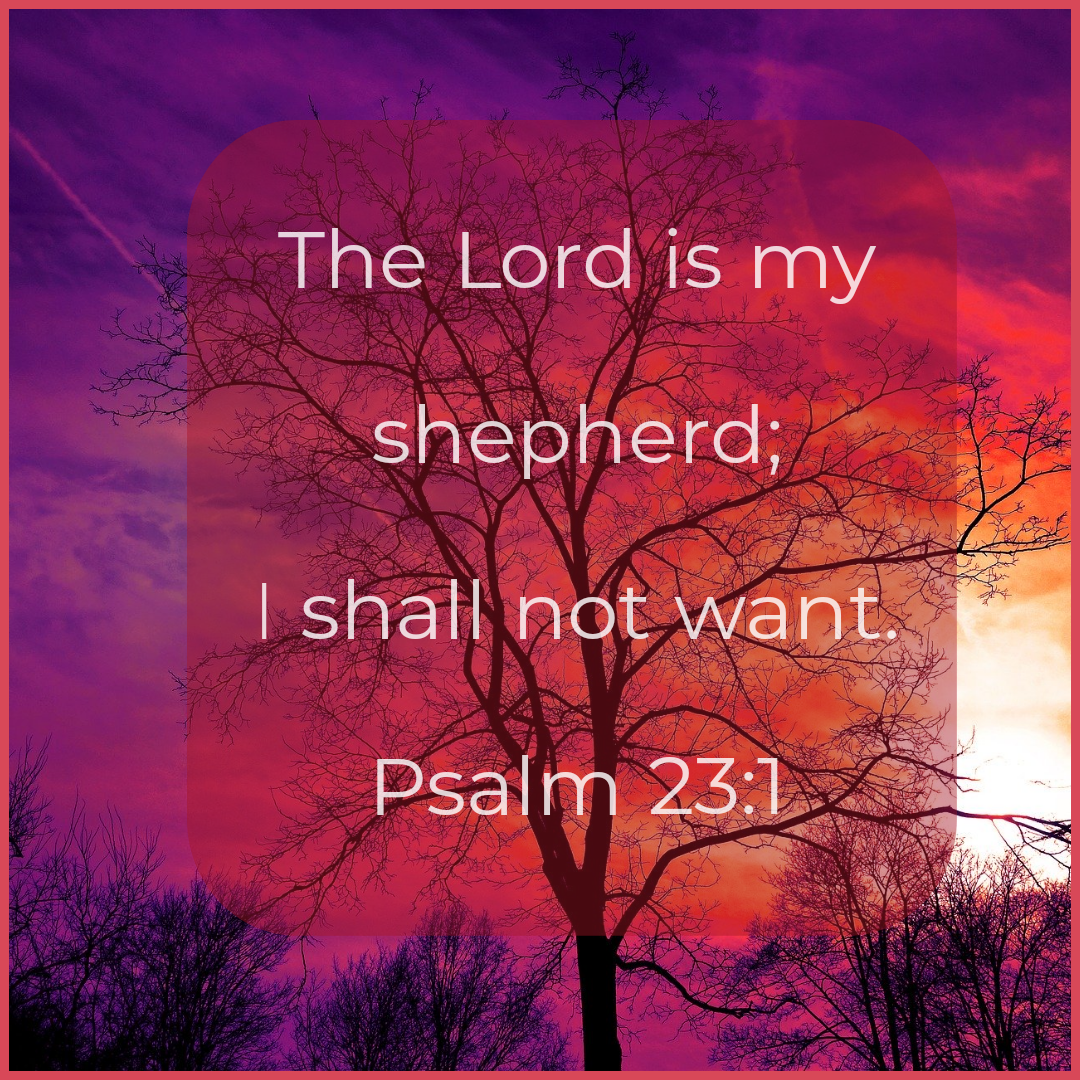 A blog post about the 23rd Psalm by Dawn Michelle Michals titled I Shall Not Want @dmmwrites  Psalm 23 A psalm of David. 1 The Lord is my shepherd, I lack nothing. 2     He makes me lie down in green pastures, he leads me beside quiet waters, 3     he refreshes my soul. He guides me along the right paths     for his name's sake. 4 Even though I walk     through the darkest valley,[a] I will fear no evil,     for you are with me; your rod and your staff,     they comfort me.  5 You prepare a table before me     in the presence of my enemies. You anoint my head with oil;     my cup overflows. 6 Surely your goodness and love will follow me     all the days of my life, and I will dwell in the house of the Lord     forever.